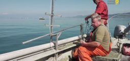 Depuis 20 ans, Jacques Perréaz prépare son bateau tous les matins pour partir pêcher sur le Léman