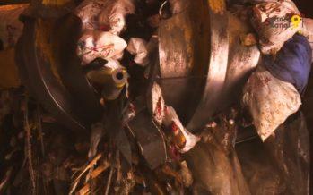 «Notre stratégie n'est plus de brûler, mais de valoriser les déchets». Pour montrer son travail, l'UTO ouvre ses portes samedi