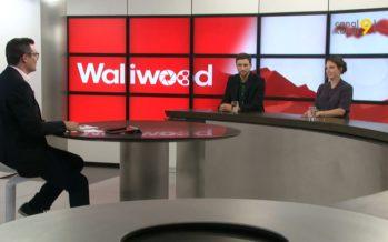 WALLIWOOD saison 7: bilan d'une année en immersion dans l'autre partie linguistique du canton