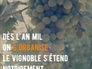 Vignes, vendanges et vignerons